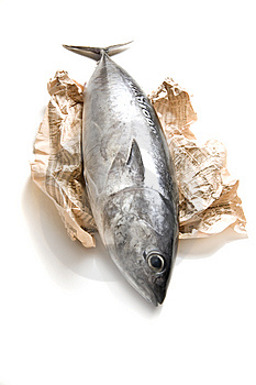 tuna-fish-and-newspaper